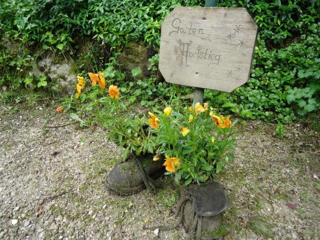 Foto: Günter Siegl / Wander Tour / Von Scharnstein auf den Hochsalm / 07.06.2012 21:13:15
