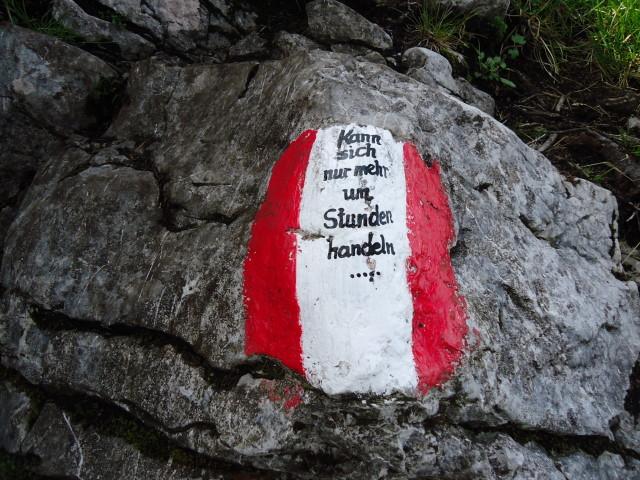 Foto: Günter Siegl / Wander Tour / Von Scharnstein auf den Hochsalm / Knapp vor dem Gipfel ;-) / 07.06.2012 21:11:09