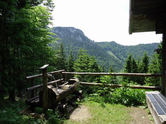 Foto: Günter Siegl / Wander Tour / Von Scharnstein auf den Hochsalm / Salinhütte / 07.06.2012 21:12:26