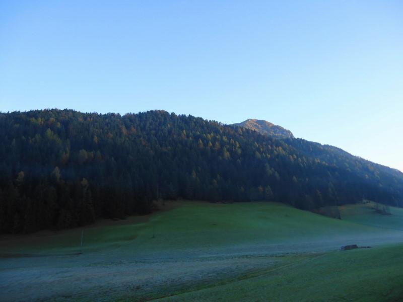 Foto: Günter Siegl / Wander Tour / Freiberg (Setitsche), 1923 m / Von Zell-Pfarre zeigt sich schon der Freiberg-Gipfel / 27.11.2016 17:52:54