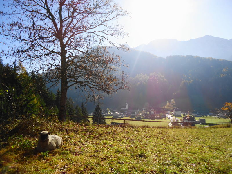 Foto: Günter Siegl / Wander Tour / Freiberg (Setitsche), 1923 m / Zell-Pfarre / 27.11.2016 17:40:56