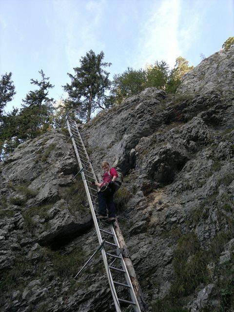 Foto: goldengel80 / Wandertour / Über den Naturfreundesteig auf den Traunstein / 03.10.2013 09:38:42