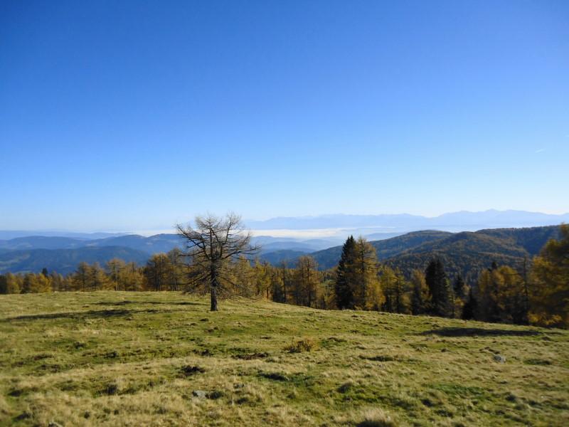 Foto: Günter Siegl / Wander Tour / Kruckenspitze, 1886 m / 06.11.2014 19:35:41