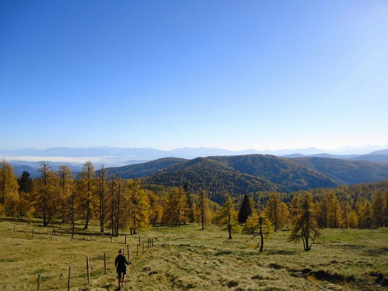 Foto: Günter Siegl / Wandertour / Kruckenspitze, 1886 m / Im Herbst besonders farbenprächtige Wanderung / 06.11.2014 19:35:35