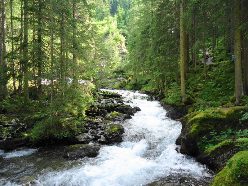 Foto: Günter Siegl / Wandertour / Alpinsteig Höll - Wilde Wasser im Untertal / 12.07.2015 13:52:54