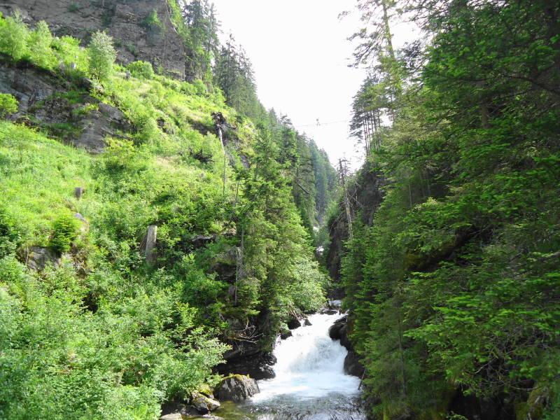 Foto: Günter Siegl / Wandertour / Alpinsteig Höll - Wilde Wasser im Untertal / Blick zur Hängebrücke / 12.07.2015 13:51:43