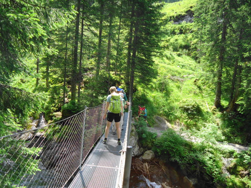 Foto: Günter Siegl / Wandertour / Alpinsteig Höll - Wilde Wasser im Untertal / 12.07.2015 13:49:53