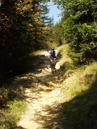 Foto: hofchri / Mountainbike Tour / Rund um den Staufen / downhill zur Steineralm / 12.10.2009 19:39:25