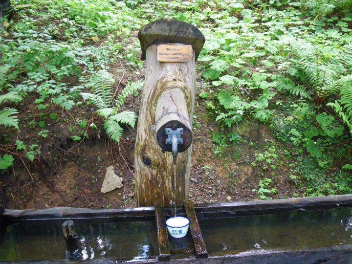 Foto: drjones31 / Wander Tour / Mallestiger Mittagskogel / Brunnen bei der Gallob Jagdhütte / 18.08.2010 15:33:47