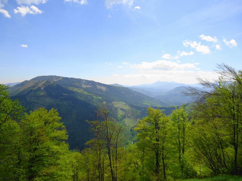 Foto: Günter Siegl / Wander Tour / Reisalpe Hinteralm überschreitung / Reisalpe / 29.05.2014 09:00:25