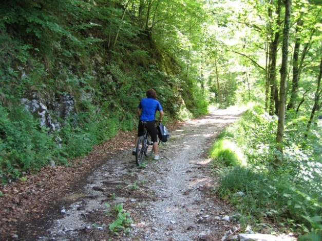 Foto: stras151 / Mountainbike Tour / Reichraming - Brunnbach / Richtung Anzenbach / 10.06.2008 22:33:45
