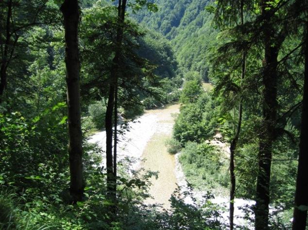 Foto: stras151 / Mountainbike Tour / Reichraming - Brunnbach / Kurz vor Anzenbach / 10.06.2008 22:34:37