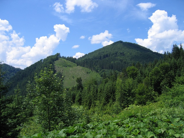 Foto: stras151 / Mountainbike Tour / Reichraming - Brunnbach / Blickrichtung Westen von der Brennhöhe / 10.06.2008 22:35:14