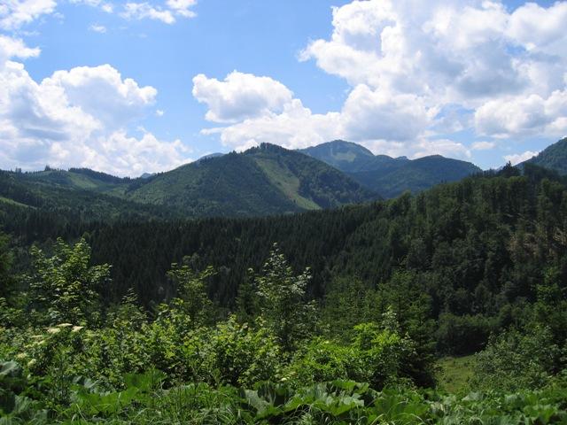 Foto: stras151 / Mountainbike Tour / Reichraming - Brunnbach / Blickrichtung Westen von der Brennhöhe / 10.06.2008 22:35:33