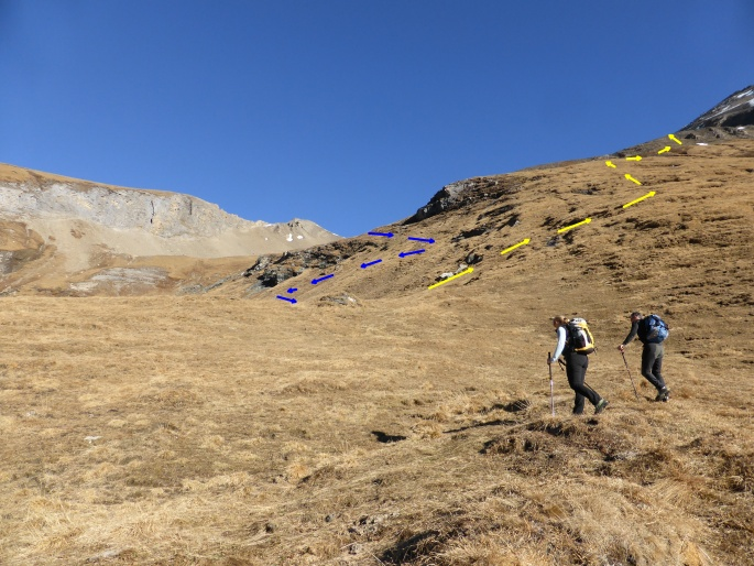 Foto: Manfred Karl / Wander Tour / Über Blumenwiesen auf die Racherin / Gelb: Aufstieg, blau: Abstieg / 11.11.2017 19:31:19