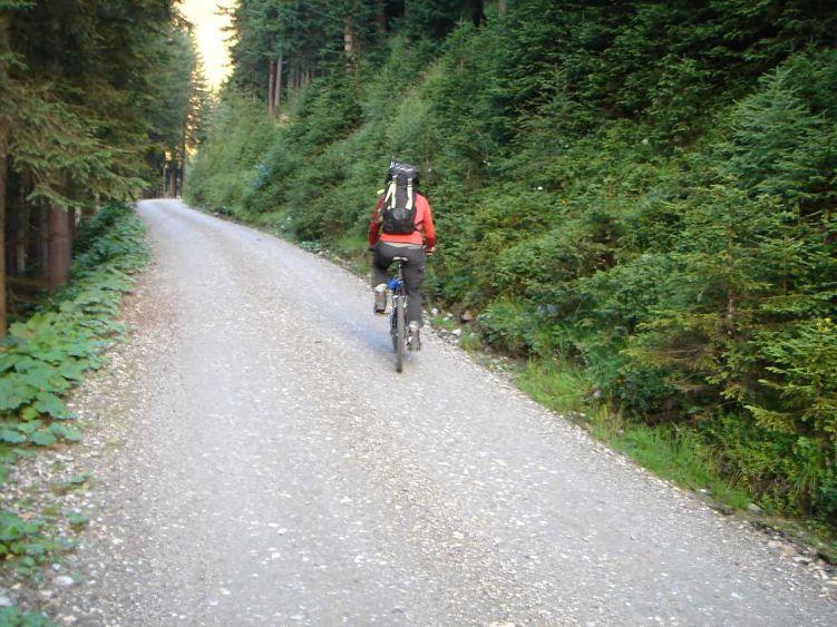 Foto: Manfred Karl / Mountainbike Tour / Auf die Junsbergalm / Im unteren Teil der Straße zur Junsbergalm / 06.05.2008 20:08:29