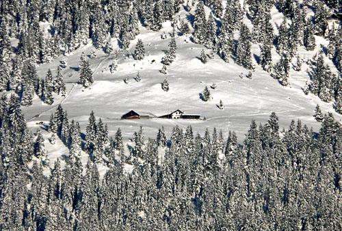 Foto: vince 51 / Wandertour / Familienwanderung zur Dürrenbergalpe / Dürrenbergalpe / 06.05.2008 23:34:54