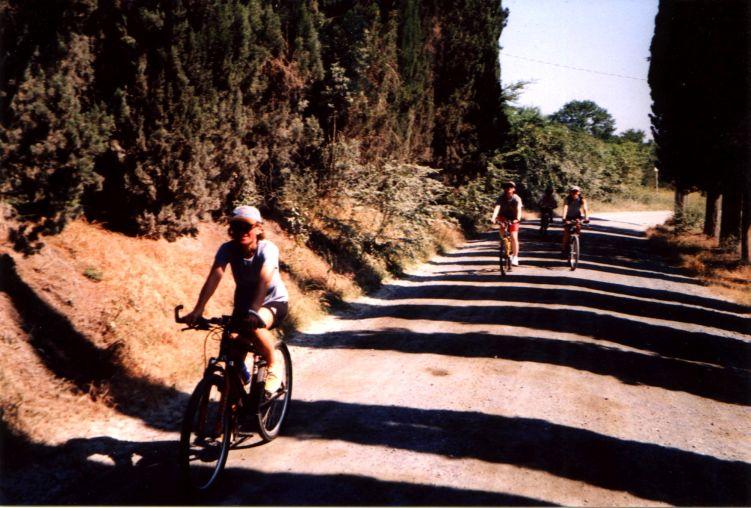 Foto: Manfred Karl / Mountainbike Tour / Von Certaldo nach San Gimignano / Endlose Zypressenreihen auf dem Weg nach San Gimignano. / 27.05.2008 20:19:16