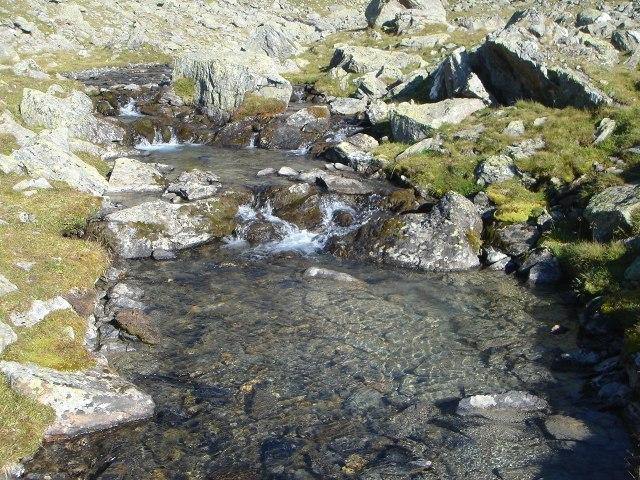 Foto: berglerin / Wander Tour / Durch das Debanttal auf den Glödis 3206m / 01.08.2009 14:43:51