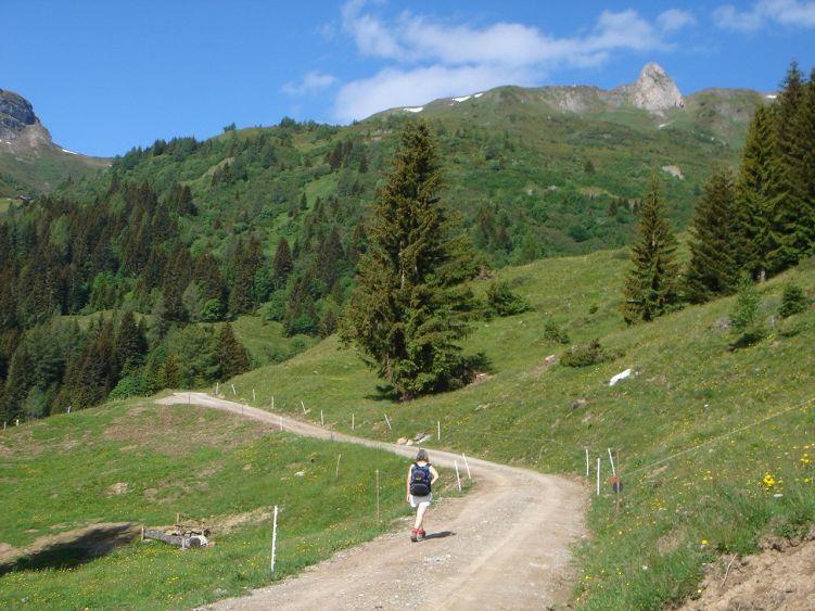 Foto: Manfred Karl / Wander Tour / Höllwand / Blick zum Schiedreitspitz / 03.06.2008 15:53:12