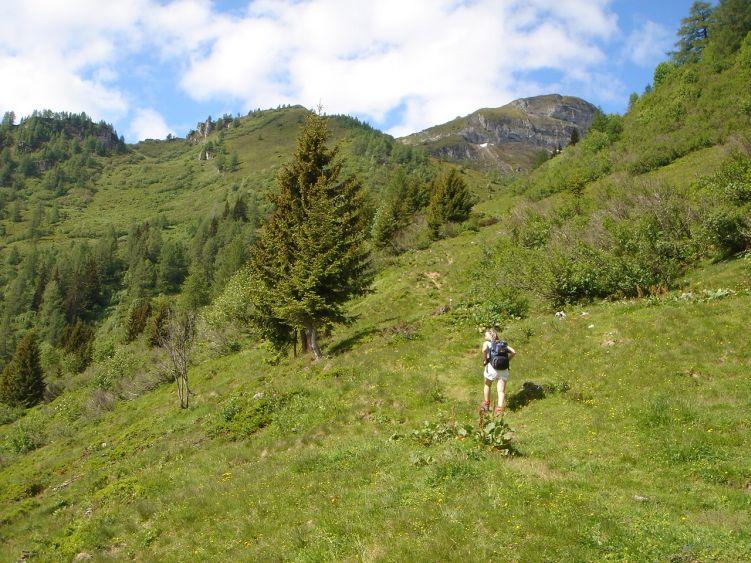 Foto: Manfred Karl / Wander Tour / Höllwand / Aufstieg zur Schied-Hochalm / 03.06.2008 15:51:51