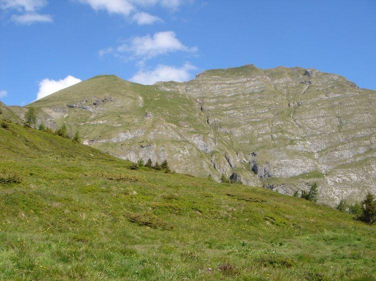 Foto: Manfred Karl / Wander Tour / Höllwand / Oberhalb der Schied-Hochalm / 03.06.2008 15:49:38