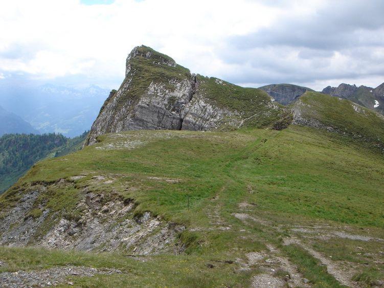 Foto: Manfred Karl / Wander Tour / Höllwand / Schiedreitspitz / 03.06.2008 15:11:43