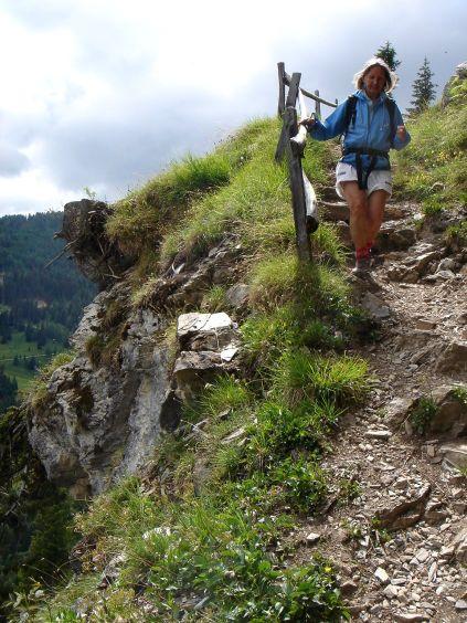 Foto: Manfred Karl / Wander Tour / Höllwand / Abstieg von der Viehhausalm / 03.06.2008 14:54:03
