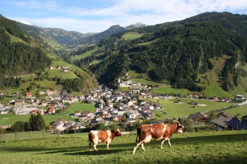 Foto: Kloiber Gabi / Wander Tour / Rundwanderung Ellmautal-Almensteig von Alm zu Alm / Ort Großarl mit Blick ins Ellmautal / 28.05.2008 10:09:47