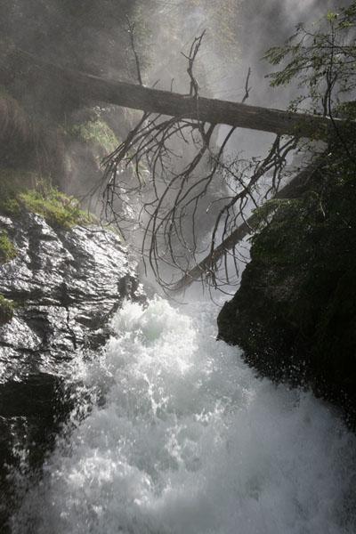 Foto: Günther / Wander Tour / Wilde Wasser im Untertal / Wandererlebnis für die ganze Familie neben eiszeitlichen Quellen, naturnahen Pfaden und Wegen / 28.01.2008 15:56:40