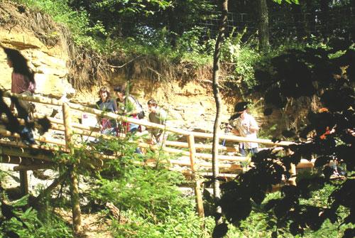 Foto: Spirit of regions / Wander Tour / Auf den Spuren der Vulkane: Rund um`s Kaskögerl / Steg durch die alte Kiesgrube / 19.06.2011 15:13:06