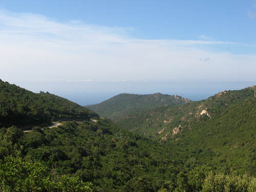 Foto: Lenswork.at / Ch. Streili / Mountainbike Tour / Von Cupabia über den Bocca di Gradello nach Coti-Chiavari / Auffahrt zum Col de Gradella / 19.10.2007 18:46:09