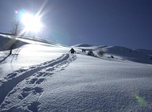 Foto: Kloiber Gabi / Ski Tour / Skitourentipp - Karkogel, 2.087 m / 12.09.2007 15:44:00
