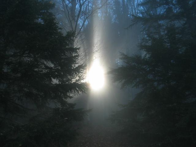 Foto: pipe / Wander Tour / Hinteralm / Der Nebel beginnt sich zu lichten / 23.09.2007 16:10:07