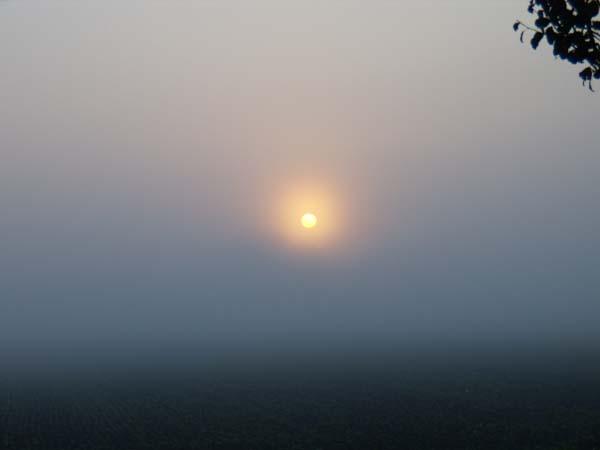 Foto: pipe / Wander Tour / Hinteralm / Sonne kommt durch den Nebel / 23.09.2007 16:14:48