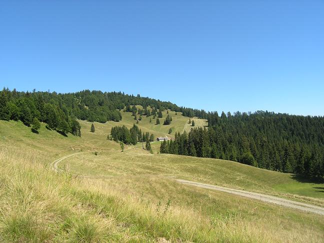 Foto: Benedik Herbert / Wander Tour / Über die Ladenbergalm auf den Grobriedel und Ladenberg / Blick zum Gipfel / 03.10.2007 19:16:29
