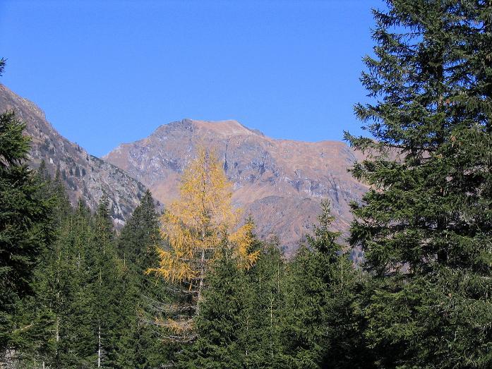 Foto: Andreas Koller / Wander Tour / Aus dem Schöttlgraben auf den Hohenwart (2363 m) / Herbst im Schöttlgraben / 17.10.2007 02:29:55