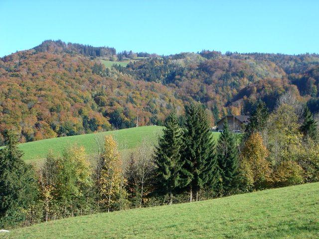 Foto: Manfred Karl / Wander Tour / Über den Hengstberg auf den Mühlstein / Die Abhänge des Mühlsteines / 23.10.2007 19:18:50