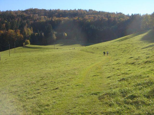 Foto: Manfred Karl / Wander Tour / Über den Hengstberg auf den Mühlstein / Gemütlicher Aufstieg entlang vom Hengstberg / 23.10.2007 19:17:05