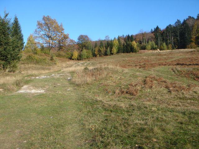 Foto: Manfred Karl / Wander Tour / Über den Hengstberg auf den Mühlstein / Wenige Minuten unterhalb der Erentrudisalm / 23.10.2007 19:13:19