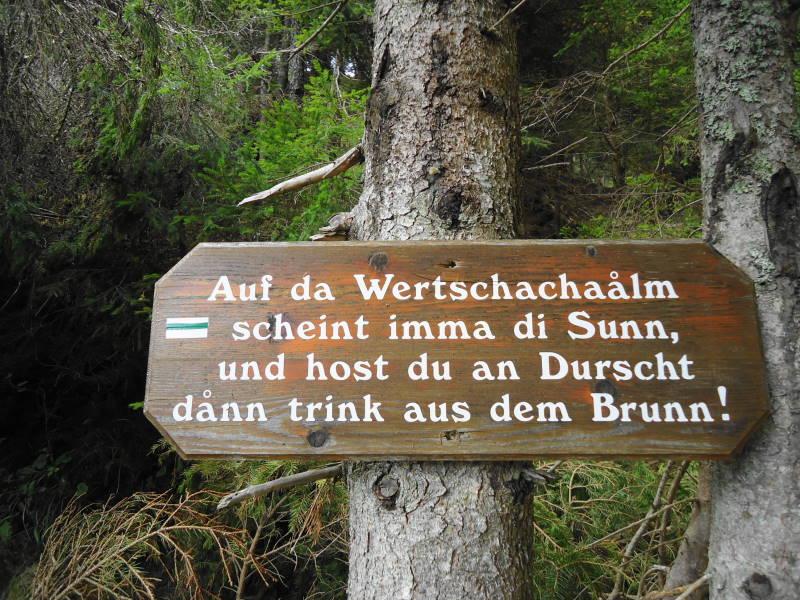 Foto: Günter Siegl / Wander Tour / Kobesnock / 24.10.2016 20:49:00