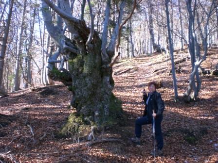 Foto: dobratsch11 / Wander Tour / Monte Nebria 1207m / 04.11.2007 20:49:29