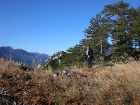 Foto: dobratsch11 / Wander Tour / Monte Nebria 1207m / 04.11.2007 20:49:17