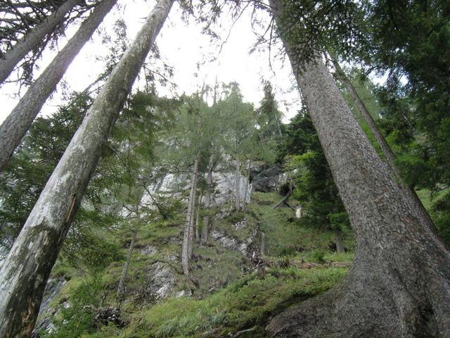 Foto: Benedik Herbert / Wander Tour / Falkenstein und Falkastoal - 2 Gipfel und 3 Seen / Aufstieg / 10.11.2007 12:08:15
