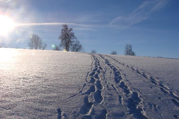 Foto: Stompas / Schneeschuh Tour / Von Mitterbach zum Luckawirt / 29.11.2007 20:55:30