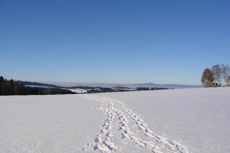 Foto: Stompas / Schneeschuh Tour / Von Mitterbach zum Luckawirt / 29.11.2007 20:55:42