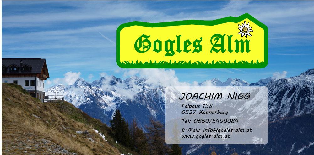 Foto: Joachim Nigg / Mountainbike Tour / Gogles Alm (Route: 795 MTB Tour tiris) / 29.04.2012 21:21:06