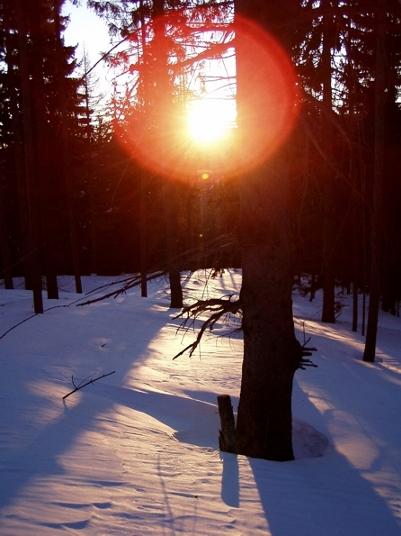 Foto: Eduard Winter / Ski Tour / Durch den Rettenbachgraben zum Waxriegelhaus / Erwachen / 03.12.2007 20:11:36