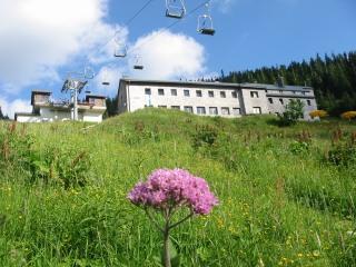 Foto: Ötschertrekker / Schneeschuh Tour / Mit Schneeschuhen auf den Ötscher / Ötscherschutzhaus / 16.09.2008 16:09:15