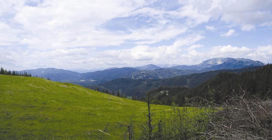 Foto: Climber69 / Wander Tour / Almwanderung auf die Malleistenalm (1265m) / Blick Richtung Rauschkogel, Veitsch, Aflenzer und Zeller Staritzen sowie die Schneealpe / 26.12.2007 15:42:40